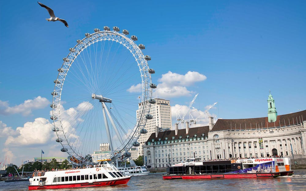 London sightseeing tour - The London Eye