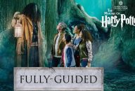 The Making of Harry Potter Studio Tour Tickets