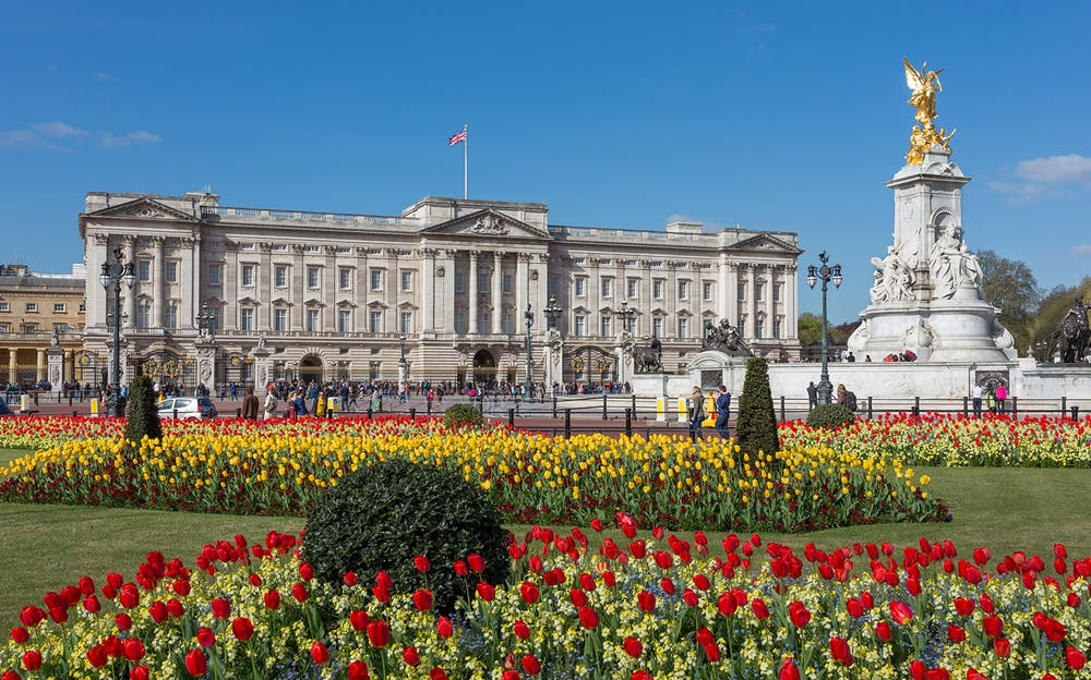 2 Day London Pass with Travel - Buckingham Palace