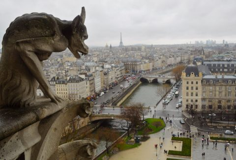 Notre Dame Cathedral Tour with Tower Access Option