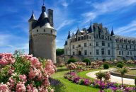 Loire Valley Chateaux Tour and Wine Tasting