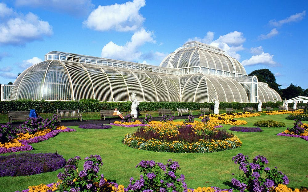 Thames Cruise and Kew Gardens combo - The Palm House at Kew Gardens