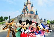 Disneyland® Paris 1 Day Ticket