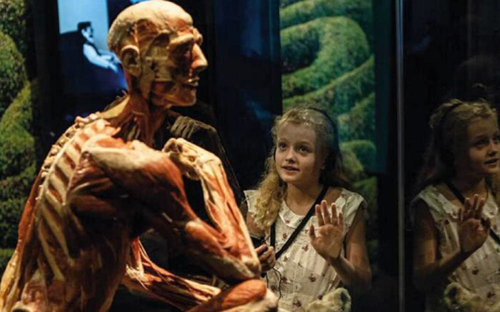BODY WORLDS London - A girl inspecting one of the human exhibits at BODY WORLDS London