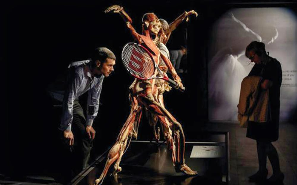 BODY WORLDS London - A sporty exhibit at BODY WORLDS London