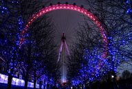 Kensington Palace & London Eye Combo Ticket