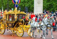 The Royal Mews Tickets